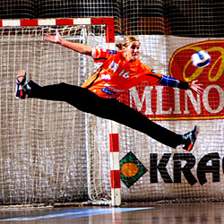 Pálinger still in the Ljubjana goal